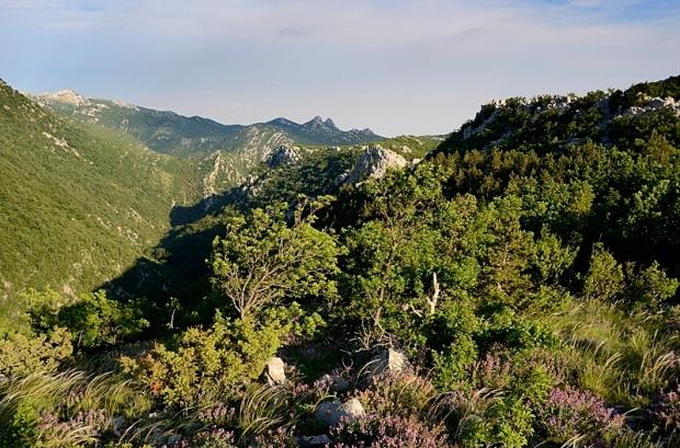 Rückblick auf den oberen Teil der Mala Paklenica